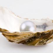 pearl-2